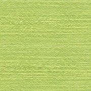 Rasant Thread Light Forest Green #1098